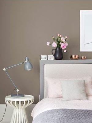 gray brown paint color for home